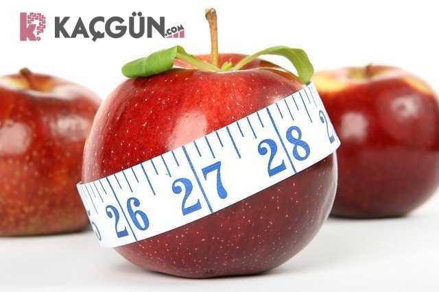 1 günde kaç kilo verilir?